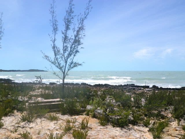 The Day After Irene on Eleuthera
